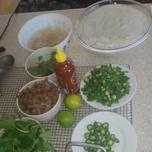 Pho Beef Soup 2